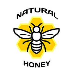 Bee icon natural honey package logo vector