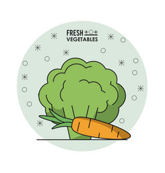 colorful poster of fresh vegetables with vector image vector image