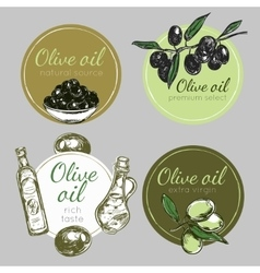 Hand drawn olive oil label set vector