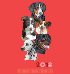 Postcard with dogs of different breeds-5 vector