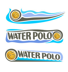 water polo ball vector image vector image