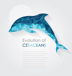 Dolphin anatomy in low poly art style vector