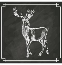 white deer sketch dark background vector image