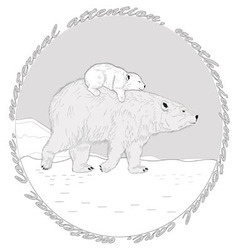 Polar bears vector