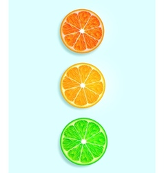 citrus fruit in the form of traffic lights vector image