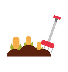 Farm rake with corn cultivate vector
