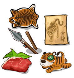 Tiger weapon meat skin endangered concept vector