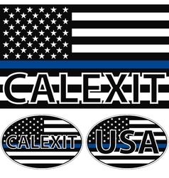 Usa flag blue stripe calexit vector