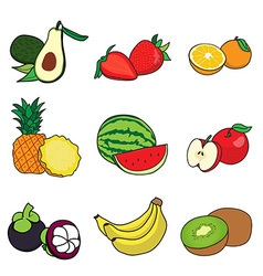 Cut in half fruit vector