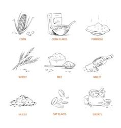 Doodle cereals groats porridge muesli vector