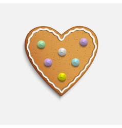 Heart shaped cookie vector image vector image
