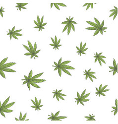 Seamless texture marijuana four vector