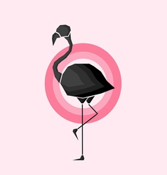 Geometric black flamingo in outlines in pink circl vector image