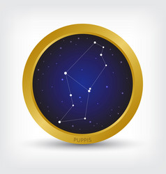 Puppis constellation in golden circle vector