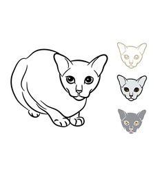 Drawing of adorable cat with three styles small vector
