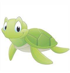 Cartoon turtle vector