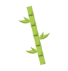 Bamboo natural plant icon vector