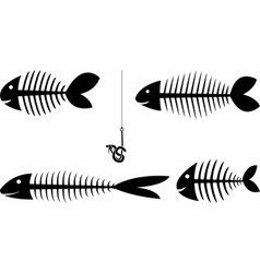set of fish sceletons vector image