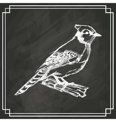 Sketch bird white dark background vector