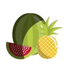 Watermelon and pineapple fruit icon vector