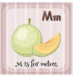Flashcard letter m is for melon vector
