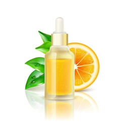 Citrus vitamin natural c realistic image vector