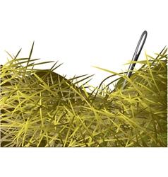 Needle in a haystack vector