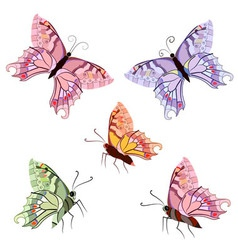 Tropical butterfly set vector