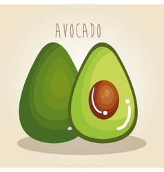 avocado fresh vegetable icon vector image vector image