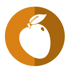 apple ripe fruit icon shadow vector image vector image