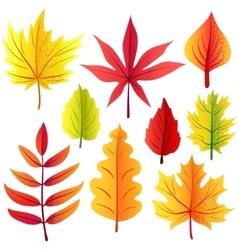 Autumn retro leaves set vector image vector image