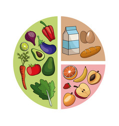 Diagram healthy food image vector