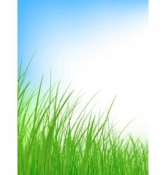 grass meadow vector image vector image