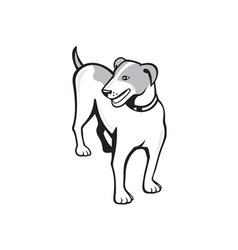 Jack russell terrier standing cartoon vector