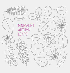 autumn minimalistic abstract floral background vector image