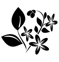 Black element for design with flora vector