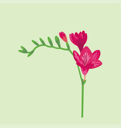 flower summer natural plant vector image vector image