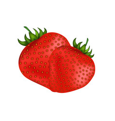 ripe fresh red strawberries isolated on white vector image vector image