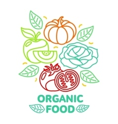 Set of organic food fruit and vegetable logo card vector image vector image