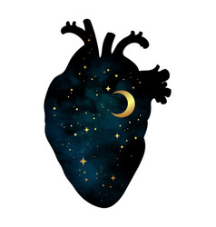 silhouette of human heart with universe inside vector image
