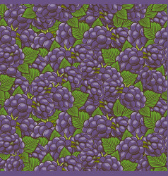 Vintage blackberry seamless pattern vector