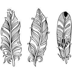 Tribal Ethnic Feathers vector image