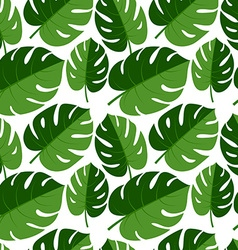 Beautiful seamless tropical jungle floral graphic vector