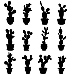Cactus at potted vector