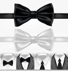 Black and white ties vector