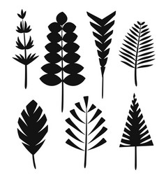 the silhouette leaves of the trees and grass vector image vector image