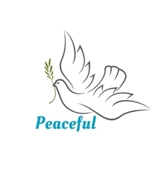 Flying white dove with olive branch vector