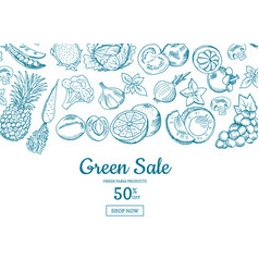 handdrawn fruits and vegetables horizontal vector image vector image