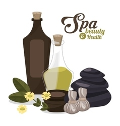 spa beauty and health oil creams with flowers vector image