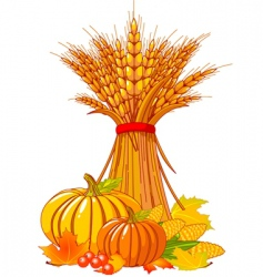 Thanksgiving harvest background vector